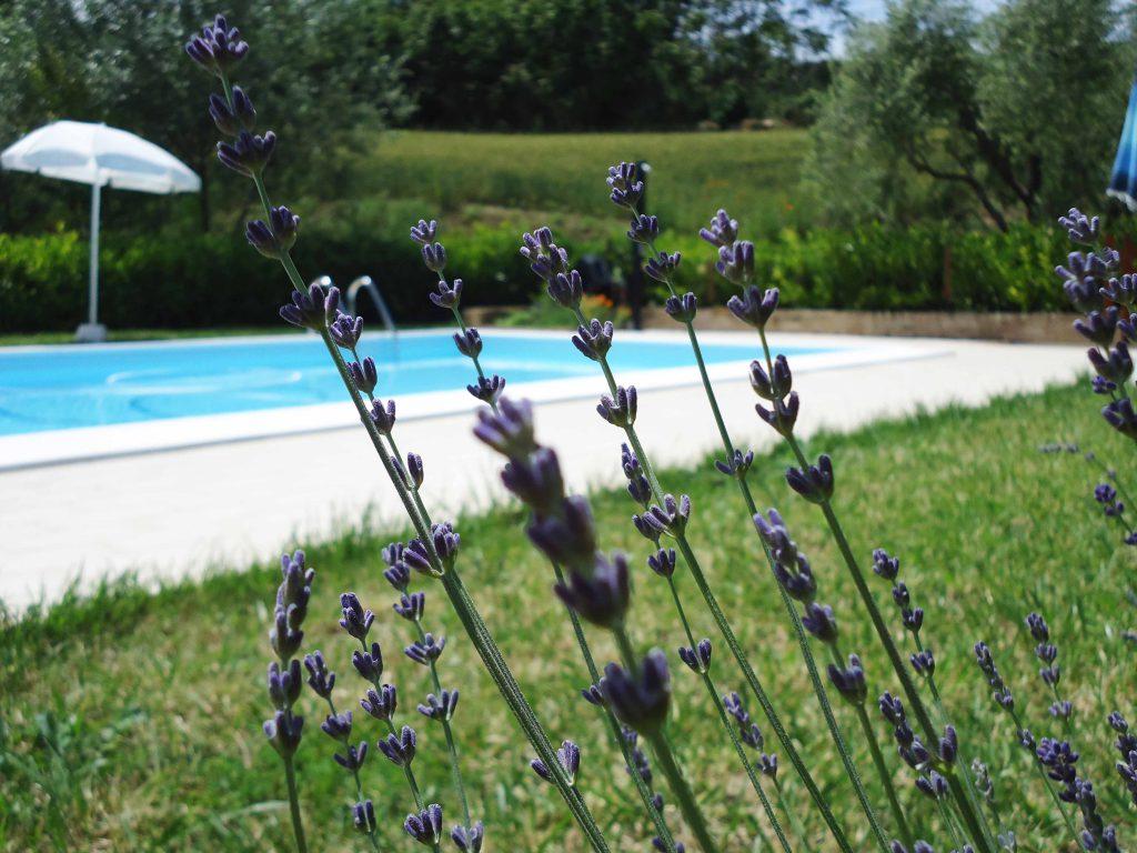 agriturismo casina corridonia marche holiday villa piscina